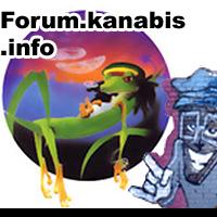 forum cannabis, ciekawe tematy i informacje