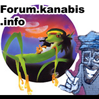 forum, marihuana, ciekawe, tematy, muzyka